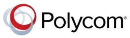 14_Logo_Polycom
