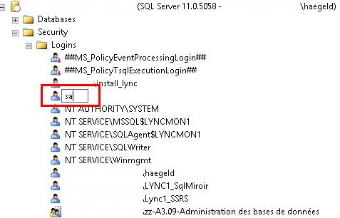 15_SQL_sa_rename